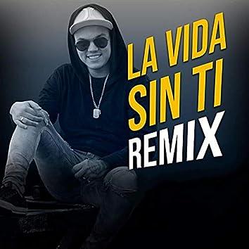La Vida Sin Ti (Remix)