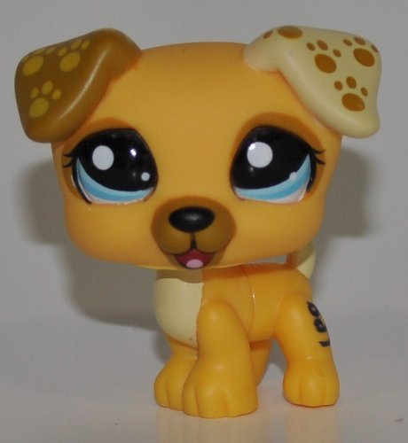 Jack Russell #1496 (Gold) - Littlest Pet Shop (Retired) Collector Toy - LPS Collectible Replacement Single Figure - Loose (OOP Out of Package & Print)