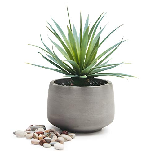 Kurrajong Farmhouse Gorgeous Life Like Soft Pale Green Artificial Plant in Rustic Pot, Set in Black Pebbles, Lovely feaux Plant in Pot, Faux Plant in Pot, 7'x 4.5' Potted Plant for Home Decor