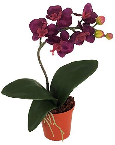 Kunstblumen Mini Orchidee Pure im...