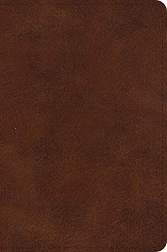 ESV Large Print Bible (TruTone, Deep Brown)