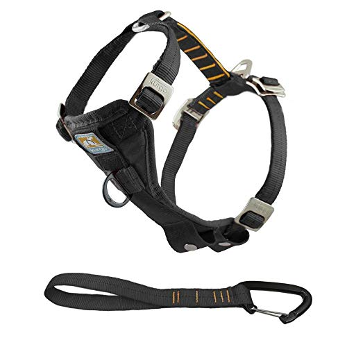 Kurgo Enhanced Tru-Fit Smart Hundegeschirr, Auto Geschirr für Hunde, vorderer D-Ring für Anti-Zug Training, inkl. Sicherheitsgurt für Hunde, Größe: M (mittel) – schwarz mit orangefarbenen Nähten