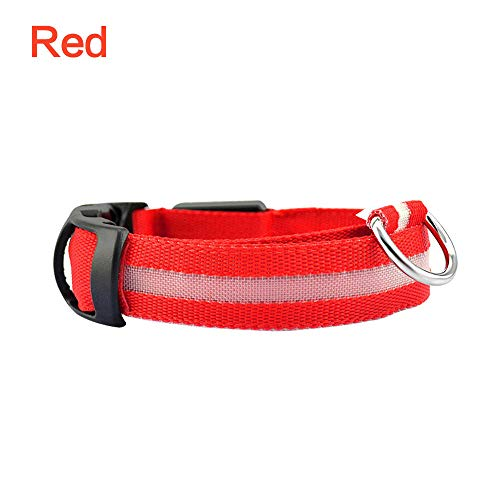 Led huisdier hondenhalsband nachtlicht veiligheid knipperend lichten hondenriem honden oplichtend fluorescerende halsbanden anti-Lost Pet Supplies lamp-Red_L_Organe_S