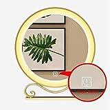 QZ Marco de la Pared del Oro Decorativo Espejo, la vanidad del LED encendió el Espejo del Maquillaje con Base de Metal, botón del Tacto, la tecnología Smart Dimming, Espejo de Plata HD (Size : 40cm)