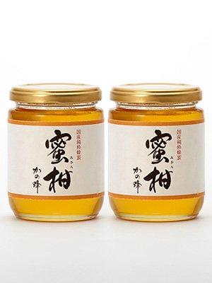 はちみつ 専門店【かの蜂】 国産 みかん 蜂蜜 300g×2本 完熟 の 純粋 蜂蜜 (瓶容器)