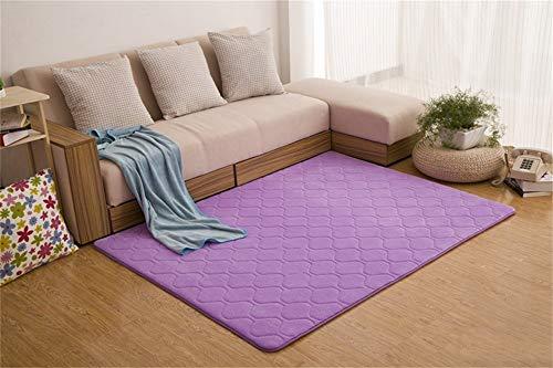 Woonkamerdecoratie, koraalfluff, modern, eenvoudig, rechthoekig, dik tapijt, woonkamer, salontafel, slaapkamer (60 x 200 cm) 100*200cm Paars