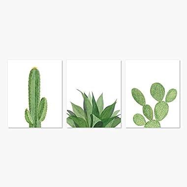 Modern Succulents & Cactus Home Decor Art Prints (Set of 3, 5x7)