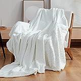 Cozy Bliss Plush Blanket Textured Waterwave Blanket Super Soft Cozy Luxury Plush Throw Blanket Fluffy Anti-Static 320gsm for Sofa Bed Travel (Waterwave-Cream, Throw 50'x60')