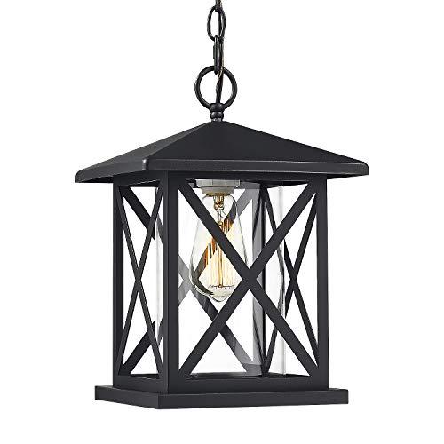 JAZAVA Exterior Pendant Light Outdoor Hanging Lantern, Outdoor Pendant Lighting for Porch Entrance 1-Light, Adjustable Lights, Matte Black Finish with Clear Glass