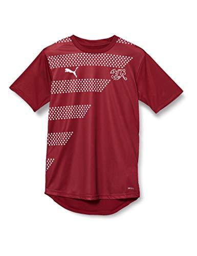 PUMA Sfv Stadium Jersey Camiseta, Hombre, Pomegranate, XL