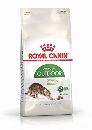 Royal Canin 55177 Outdoor 4 kg - Katzenfutter