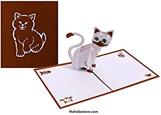 Cat lover Pop Up Card for All Occasions -Happy Birthday Cards, Thank you card, Get Well cards - The Hebe Store