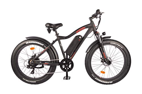 DJ Fat Bike Electric Bike