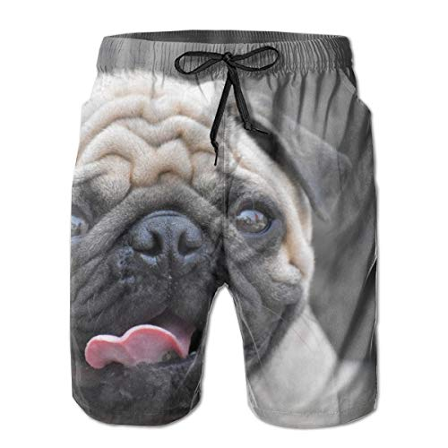 YongColer Men's Funny Pug Dog Shorts Swim Trunks Best Board Shorts for Sports Running Swimming Beach Surfing Quick Dry Breathable Bathing Suits Beach Holiday Party Swim Shorts (XL)