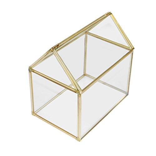 PETSOLA 1x Hexaedrisch Glas Terrarium Geometrisch Pflanzen Blumen Topf Vase Blumentopf - Klar + Messing, 15 × 10 × 15 cm
