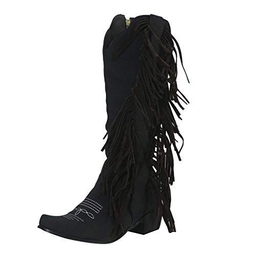 Dasongff Damen Cowboystiefel mit Trichterabsatz Fransen Nieten Stiefeletten Halbhohe Stiefel Mit Blockabsatz Ankle Boots Vintage Spitz Stiefel Zipper Freizeitschuhe Herbst Winter