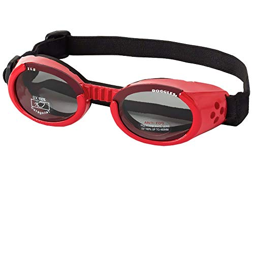 Doggles ILS Shiny Red Frame Smoke Lens Small