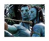 CXFRPU Puzzles Rompecabezas 300/500/1000/1500 Piezas Adultos, Secuela Cine Avatar Estatua Rompecabezas Juego de los Juguetes for la Educación (Size : 500pc)