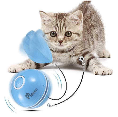 Pidsen Spielzeug für Katzen, Bälle mit Katze, interaktives Spielzeug für Katzen,...