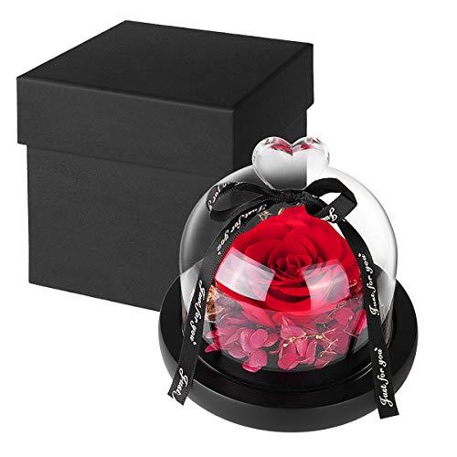 Richaa Flor Eterna Rosa Fresca Preservada con Luz Cálida Rosa Encantada en Cúpula de Cristal Regalo para San Valentín Día de la Madre Aniversario Cumpleaños Navidad (Rojo)