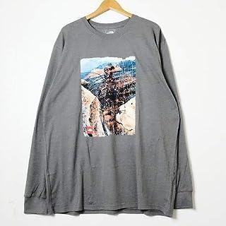 【正規品】ノースフェイス【THE NORTH FACE】L/S PRINT T-SHIRT長袖プリントTシャツグレー フォトT