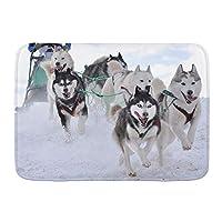 NIESIKKLA バスマット、冬の雪上での犬ぞりレースでそりの後ろに隠れている犬ぞり旅行者、マット滑り止め ソフトタッチ 丸洗い 洗濯 台所 脱衣場 キッチン 玄関やわらかマット 45x 75cm