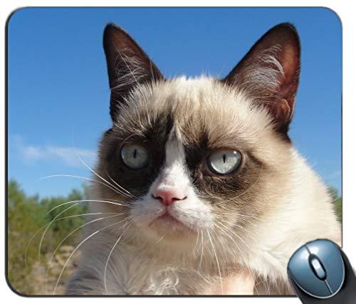 Mauspad Gedruckt Rutschfeste Gummi Komfortable Maßgeschneiderte Computer-Mauspad Mauspad Gaming-Mauspad Mürrisches Katzenmuster