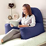 Coozly BackRest Support with High Armrest and Removable Cover. (Navy)