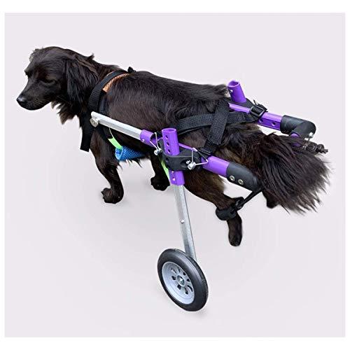 Silla de ruedas ligera para perros Silla de ruedas para perros pequeños para patas traseras Perros mayores, gatos, conejos Patinete para mascotas Carrito para perros con correas para rehabilitación de