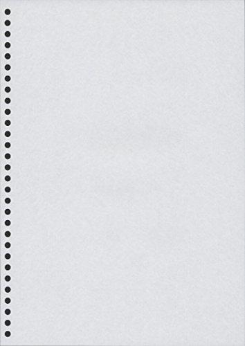 A4厚紙上質110kg 30穴 ファイル穴付きプリンター用紙(ルーズリーフの穴ピッチ)(A4厚紙白紙30穴:無地)