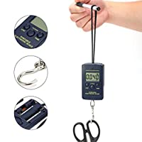 YANHUA Hand Balances 1g~40kg Portable Electronic Scale Hanging Fishing Luggage Digital LCD Pocket Weight Hook Scale Backlight
