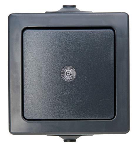 Kopp Nautic Taster, Aufputz, für Feuchtraum, 250V (10A), IP44, anthrazit, 566315004