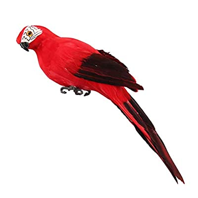 Fan-Ling Colorful Fake Parrots,Artificial Birds Model Outdoor Home Garden Lawn Tree Decor,Garden Yard Outdoor Indoor Art Crafts Decor,Cute Craft Decorative Ornaments for Home Table Decoration (C)