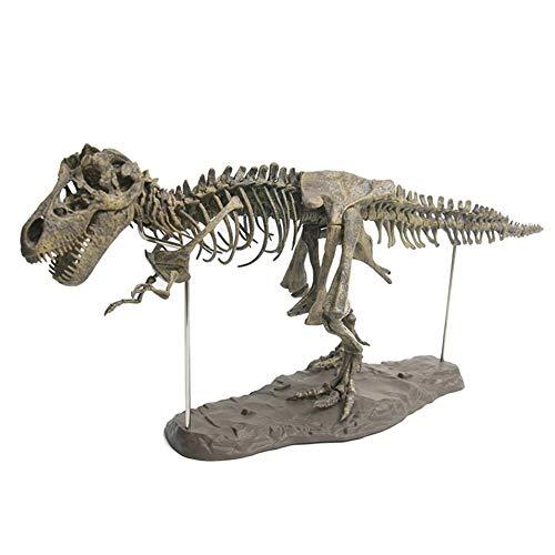 4D Montaje del Esqueleto de Dinosaurio Kit de Excavación de Esqueletos de Dinosaurio Esqueleto Fósil de Tiranosaurio PVC Juguetes de Niños Modelo Animal Simulado