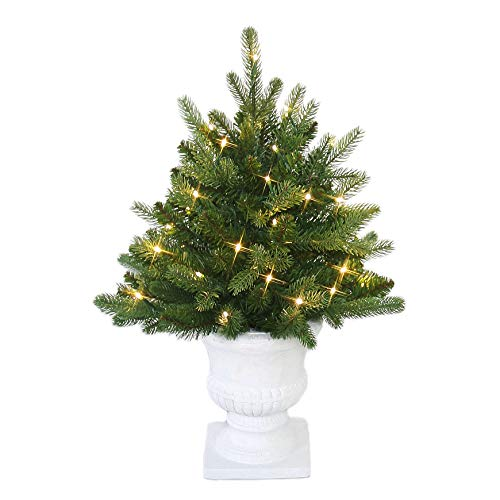 MARTHA STEWART Tabletop Pre-Lit Artificial Christmas Tree in Decorative Urn, 24 Inch, Clear Lights, 97823