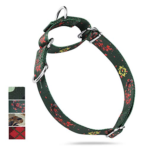 Premium Escape-Proof Martingale Collar for Dogs Comfy and Safer, Daily Use Walking Professional Training - Double Ring Attached Name Tags. (Medium, Green Plum Flower)