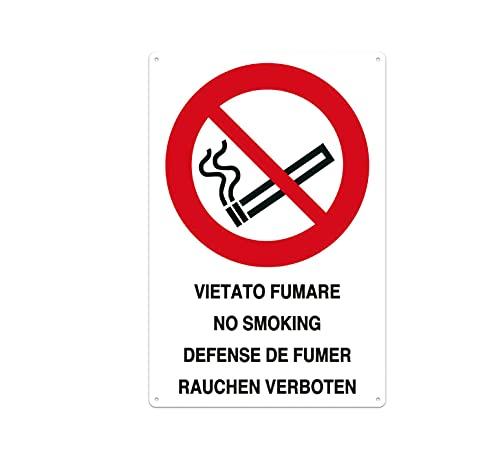 Nitek Cartello Vietato Fumare in PVC 30cm x 20cm– Cartello Autoadesivo| Sign, Schild | Impermeabili Lavabili, Ufficio, Palestra, Cinema, Pizzeria