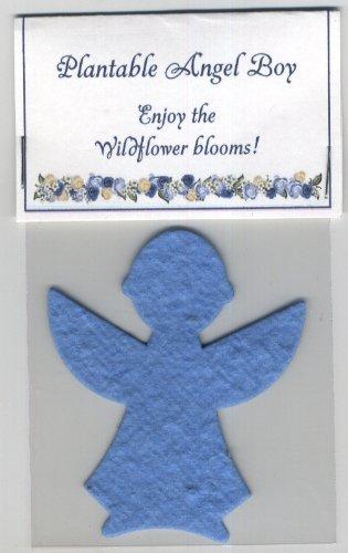 Set of 5 Plantable Wildflower Boy Angel Favors