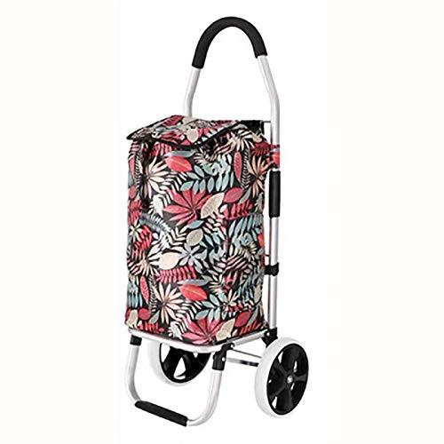 Carrito de la compra Utilidad de Carros - CARRO de Escaleras de edad avanzada Carro de compras en las ruedas Mujer cesta del hogar grande bolsas de la compra de la carretilla de remolque plegable conv