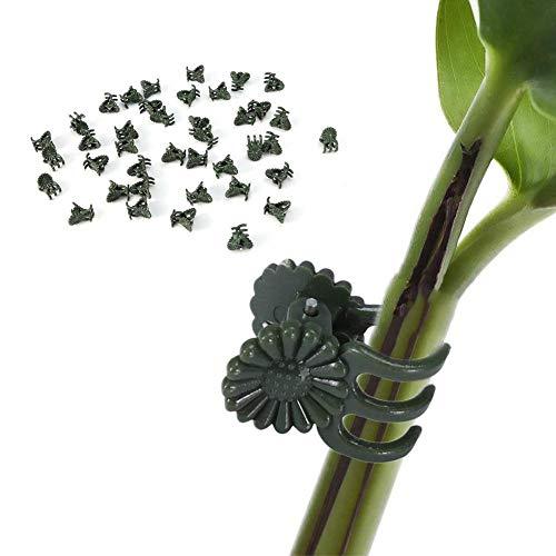 100 Stück Pflanzen-Clips Kunststoff Orchideen-Ranken-Clip Garten Clip Dekoration Clip Pflanze Bauernhof Blumen Obst gebunden Bündel Ast Klemmen Gartenwerkzeug
