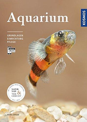 Aquarium: Grundlagen, Einrichtung, Pflege