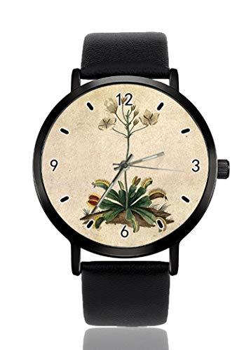 Reloj de pulsera vintage Venus con trampas de mosca para hombres y...