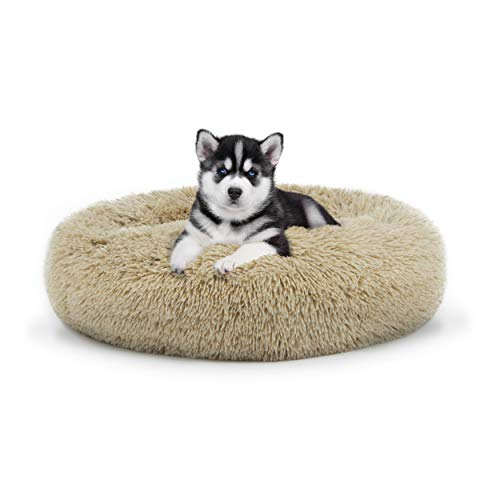 The Dog's Bed, Premium Plush Grey Dog Beds in M/L/XL, Fully Washable, Extremely Soft & Comfortable
