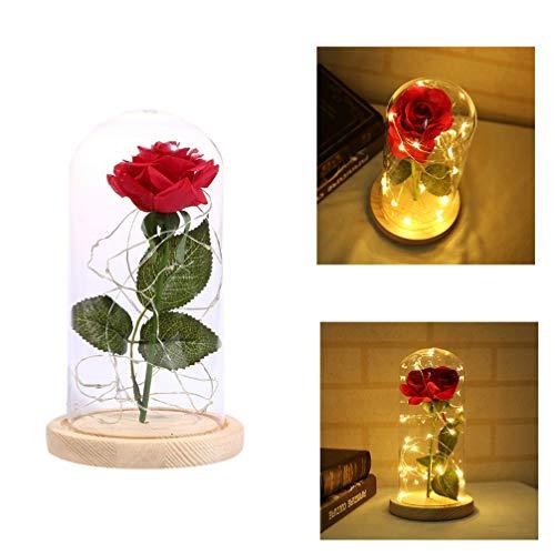 PixNOR Luz Noturna Rosa, Infinita Rosa Sob Vidro Imitação Flor Rosa Carregamento USB para Mulheres Namoradas
