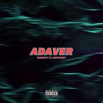 Adaver