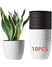 6 Inch Plastic Self Watering Planter, Modern African Violet Pots Automatic-Watering Flower Pot for Plants Indoor Golden Devil's Ivy, Herbs, Ocean Spider Plant, Orchid, Black Color
