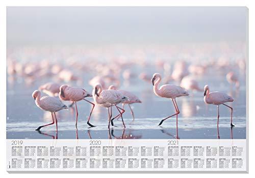 SIGEL HO472 Papier-Schreibunterlage zum Abreißen mit Kalender, ca. DIN A2 - extra groß, 30 Blatt, Motiv Flamingos