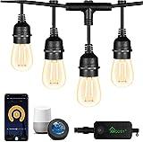 Intelligente Außen LED Lichterkette - Smart Lichterkette Glühbirnen von App & Alexa Dimmbar&Timer Lichterkette für Aussen IP65 Wasserdicht Bruchsicher 15M 15 Bulbs Warmweiß für Innen und Außen