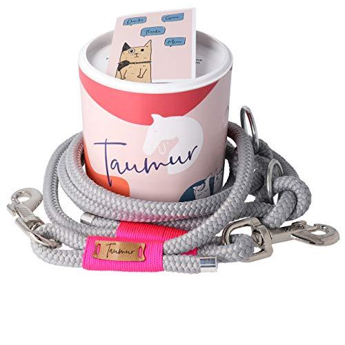 Taumur: zweifach verstellbare Hunde-Tauleine - grau/pink - Leine für große Hunde aus robustem PPM