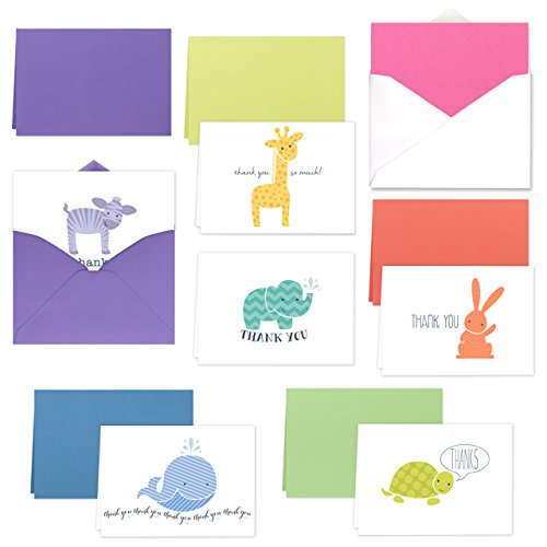 Animal Brights Note Card Assortment Pack/Set Of 36 Thank You Cards / 6 Baby Animal Designs With Envelopes